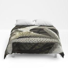 Coastal Treasures Collection Comforters