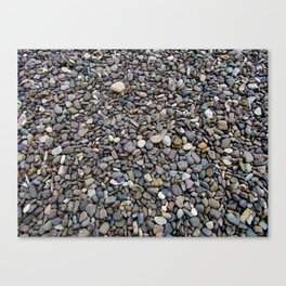 What Stories You Could Tell... Rocks of Jasper Beach Canvas Print