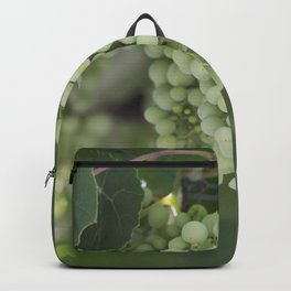 grape grows on vineyard in spring Backpack
