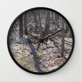 Deer grazing Wall Clock