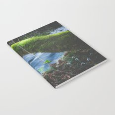 Enchanted magical forest Notebook