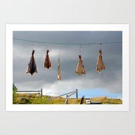 Drying Fish Art Print