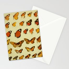 Vintage Butterfly Print - African Mimetic Butterflies (1910) - African Monarch Butterflies & Mimics Stationery Cards