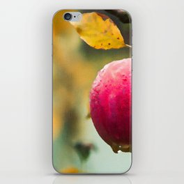 Apples in the fall iPhone Skin