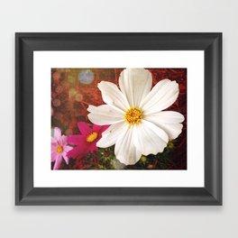 The Light of Spring Framed Art Print