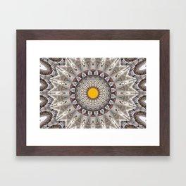 Lovely Healing Mandalas in Brilliant Colors: Black, Ecru, Gray, Silver, Orange, and Yellow Framed Art Print