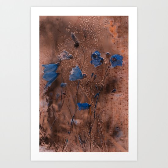 Evening bluebells. Art Print