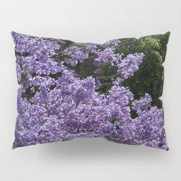 Flowering Jacarada Tree Pillow Sham