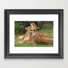 Tenderness In The Wild Framed Art Print