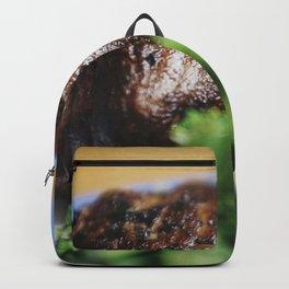 Beef steak sprinkled with black salt closeup Backpack