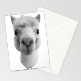 miel Stationery Cards