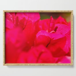 Pink bougainvilleas Serving Tray