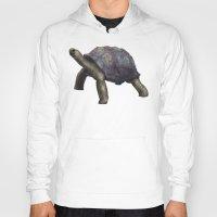 tortoise Hoodies featuring Tortoise by Ben Geiger