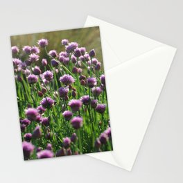 Chives 2 Stationery Cards