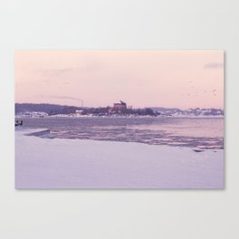 Nordic winter Canvas Print