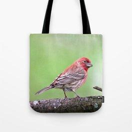 Fancy Finch Tote Bag