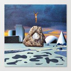 Salt Seeking Salt Canvas Print