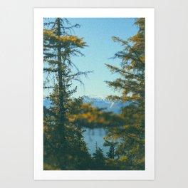 Into the Wild XV Art Print