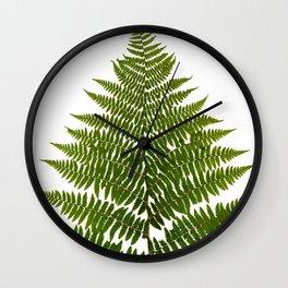Lady Fern Botanical Wall Clock