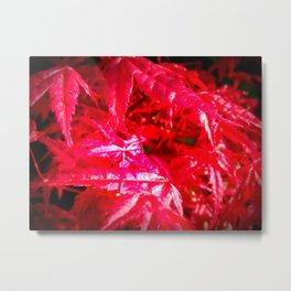 Glistening Red Metal Print