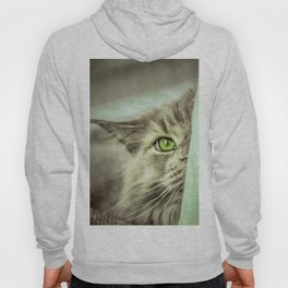 Small brother is watching you Hoody