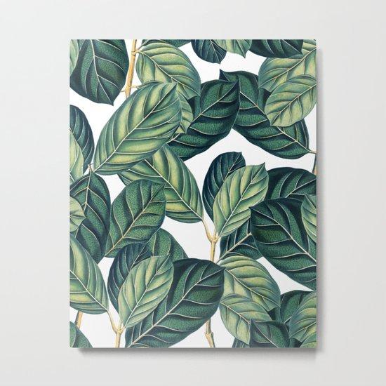 Botany #society6 #decor #buyart Metal Print