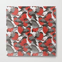 bullfinch Metal Print