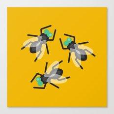 No Flies On Me Canvas Print