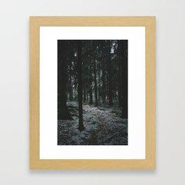 Moody Forrest in Norway Framed Art Print