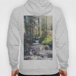 a mountain stream ... Hoody