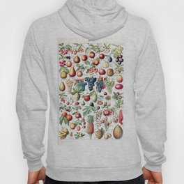 Adolphe Millot - Fruits pour tous - French vintage poster Hoody