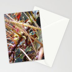 Dragon Fight    [PLANTS]   [VINES] Stationery Cards