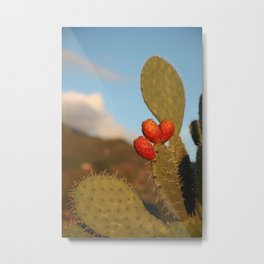 Prickly pears on the background of the setting sun Metal Print