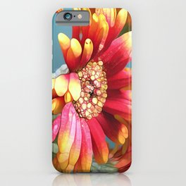 Sunny Gerbers iPhone Case
