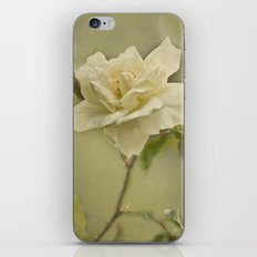 Vintage Rose iPhone & iPod Skin