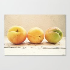 Other 3 appricots Canvas Print