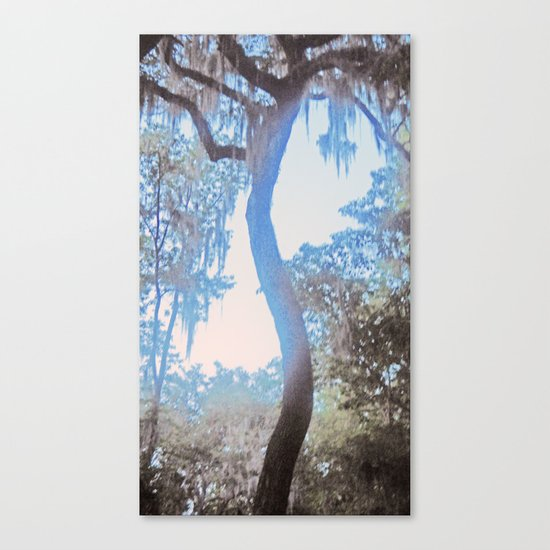 S is for Tree Canvas Print