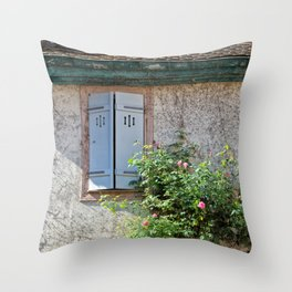 Windows and Pink Roses Throw Pillow