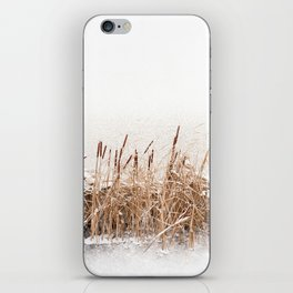 Snow on Typha reeds and frozen water iPhone Skin