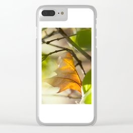 Winter leaf in the wind Clear iPhone Case