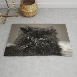 Handsome Kitty Rug