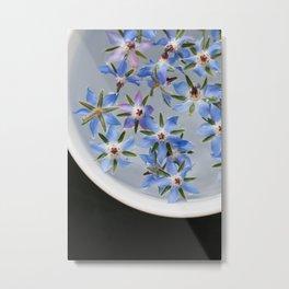 Borage Flowers Metal Print