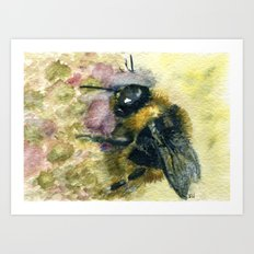 Watercolour Bumble Bee Art Print