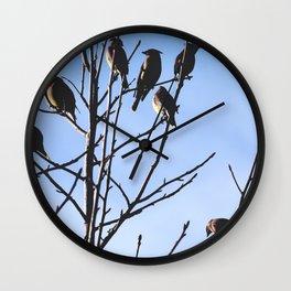 cedar waxwings Wall Clock