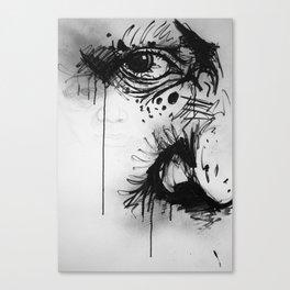 A story, through my eyes... Canvas Print