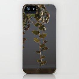 Hanging Plant iPhone Case