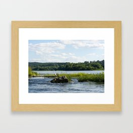 White Crane Framed Art Print