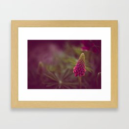 Pink Flow Framed Art Print
