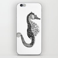 seahorse iPhone & iPod Skins featuring SEAHORSE by VOLPINE