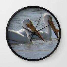 White Pelicans at the Jensen Nature Park in Utah Wall Clock